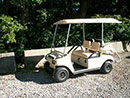 4 Passenger Golf Car Rental