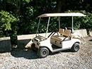 4 Passenger Golf Car Rental