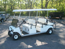 6 Passenger Golf Car Rental