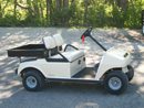 Golf Car with Truck Bed Rental